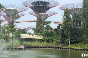 Gardens by the Bay Singapore TOMTASIA